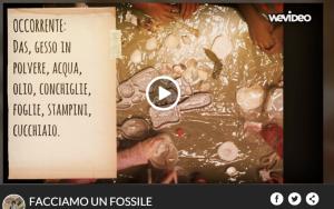 wevideo fossili